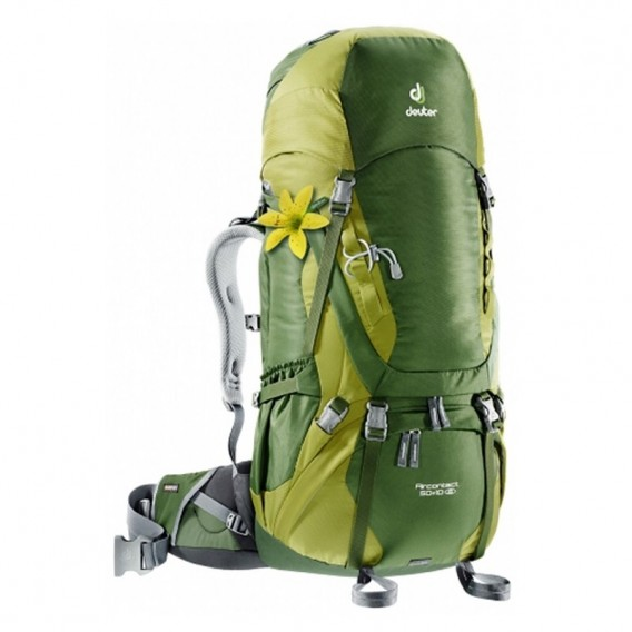 Deuter Aicontact 50 + 10 SL Damen Trekkingrucksack 50L pine-moss im ARTS-Outdoors Deuter-Online-Shop günstig bestellen