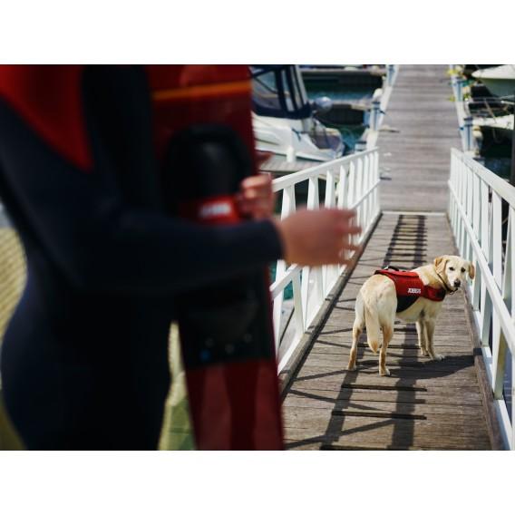 Jobe Pet Vest Hunde Nylon Schwimmweste rot hier im Jobe-Shop günstig online bestellen