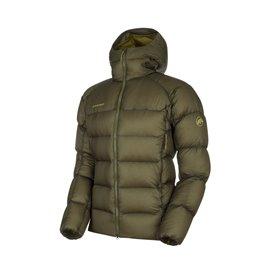 Mammut Meron IN Hooded Jacket Herren Winterjacke Daunenjacke iguana-boa im ARTS-Outdoors Mammut-Online-Shop günstig bestellen