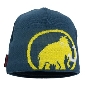 Mammut Tweak Beanie Mütze Strickmütze wing teal-blazing im ARTS-Outdoors Mammut-Online-Shop günstig bestellen
