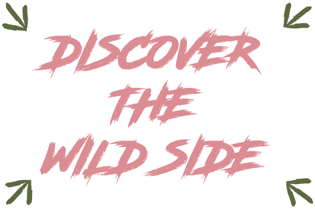 discover the wild side